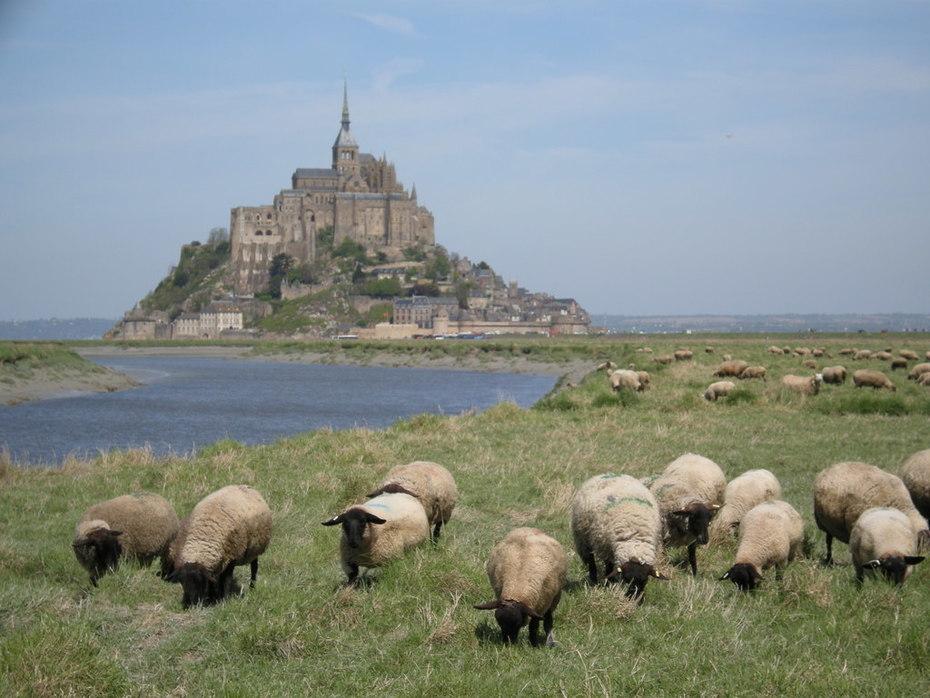 Mont St Michel - Normandy