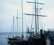 Serendipity Sayonara Tabor Boy Nantucket 1972