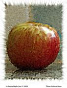 ApplePix_0007