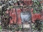 Flower Pot In The Yard