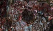 Meat Vortex