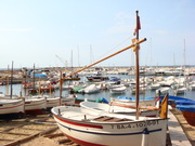 In the Med
