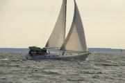 Chesapeake Sailors