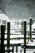 snow on the docks