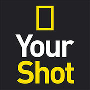 "NGS - ""Your Shot"" Pictures"