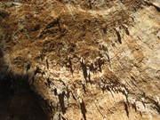 Tufas on Moon cave, Cala luna