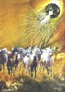 VU 17 Gallopping Horse Herd 1
