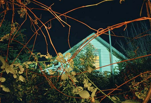 House and Grapevines