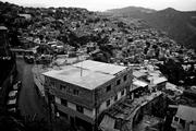 Ambrosio Plaza-31