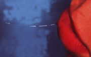 '(Not) myself as a fountain', Light Box, 50x32cm, 1998