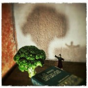 Un Evangelizador Vegetariano