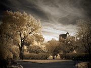 Two Roads Diverged In an Infrared Park