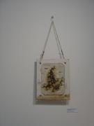 '(fisher) theme on a cedar plank' (exterior)