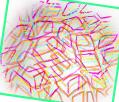 netz logo 2010