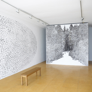Rubicon Gallery Dublin Installation / Artist Anita Groener