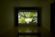 Rubicon Gallery Dublin Installation / Artist Martin Healy
