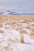 Wild Horse Butte