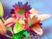 Daisy and Lilacs