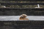 Proyecto Colectivo - Biblioteca Abierta