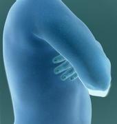Autoretrato (Una radiografía)