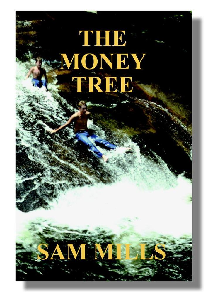 THE MONEY TREE, WNC-set action-adventure novel.