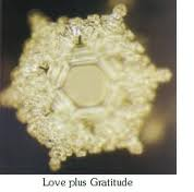 love plus gratutide
