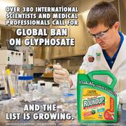Global Ban on Glyphosate