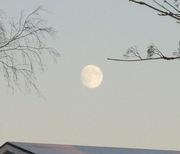 Månen090109_2