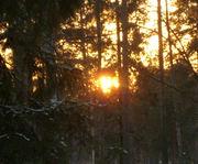 Solen090109