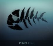 piratefish