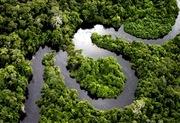 AMAZÔNIA...PARA SEMPRE...ACEITE ESTA IDÉIA