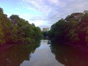 Rio Cocó