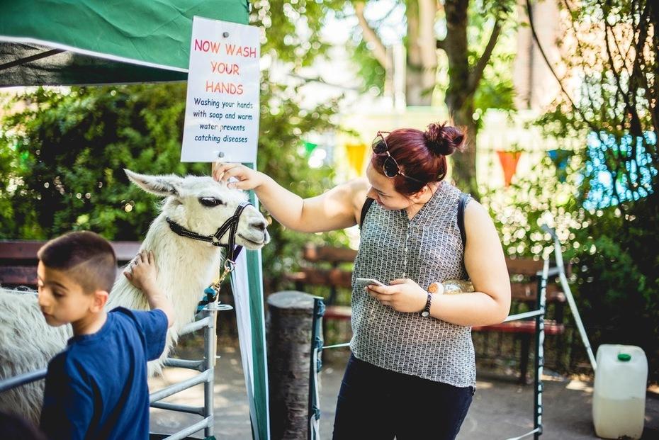 fortune street park community fun day 2018