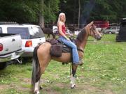 Sport horse/Trail riding
