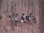Trail riding in hillsboro