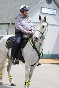 Ranger @ Horse Park Police Barn