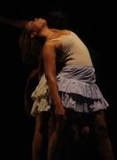 Curso profissional 2008