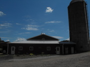 Holter's Holstein Farms