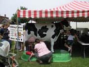 Kids' milk contest at the Enosburg Dairy Festival