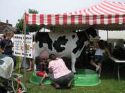 Kids' milk contest at the Enosburg Dairy Festival