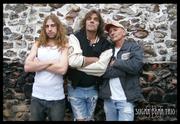 2010 Stars Sugar Bear Trio