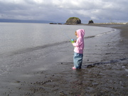 Fishing for dollies