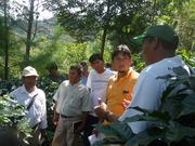 Pasantía de motivación con los productores cafetaleros de Pampa Whualey