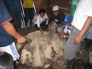 REPRODUCCION DE MICRORGANISMOS DE MONTAÑA CAC DIVISORIA TINGO MARIA PERU