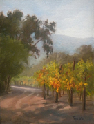 A Walk in the Vineyards