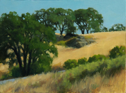 Hillside Oaks