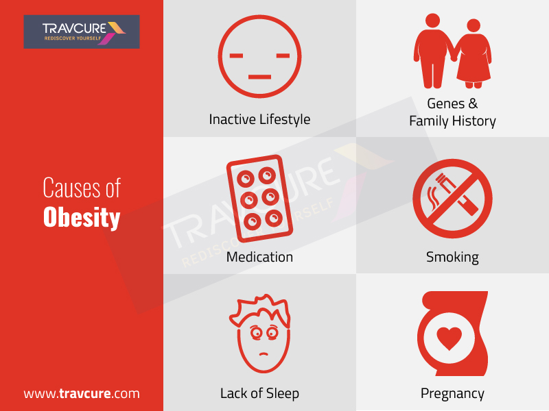 Causes of Obesity and Overweight