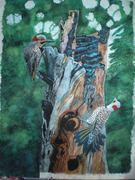 The Woodpeckers Courtship Dance