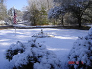 December 2009, my yard
