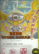 BUDO POWER CERTIFICATE